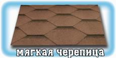 myagjkaya-cherepica